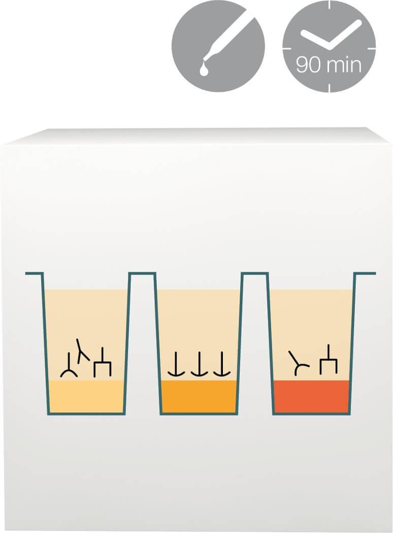 lab-procedure-2
