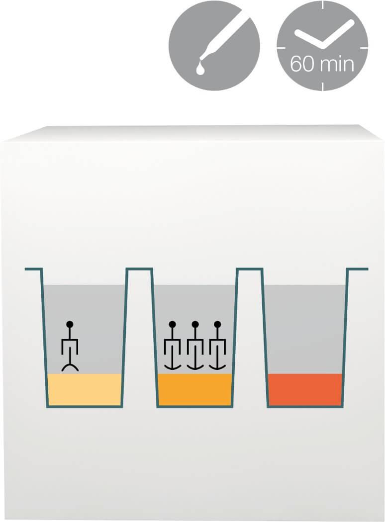 lab-procedure-6